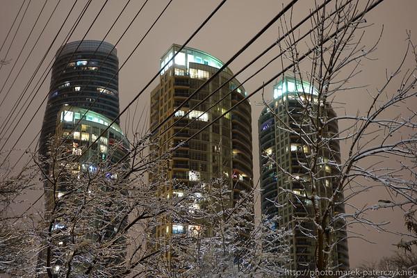 Lodowy Ogród Wieczorem / Ice Garden by Night