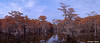 Mill Pond in Fall