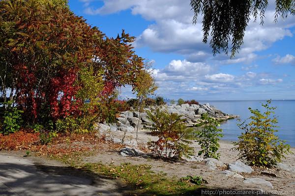 Złota kanadyjska jesień nad brzegiem Ontario