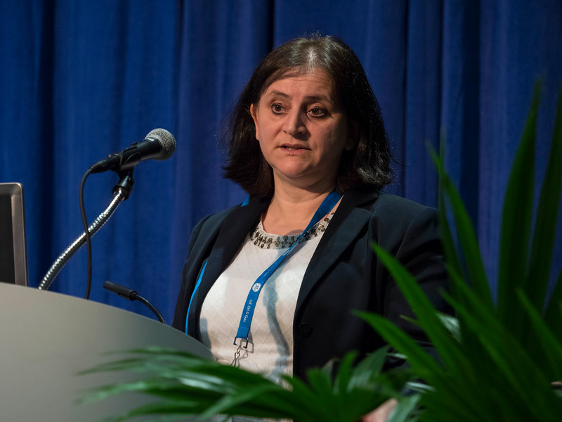Naima Spurr, of Baker Hughes,speaks during Morning Technical Session: Well Completions