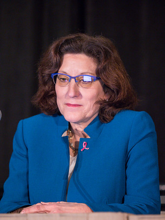 Hope Rugo, MD speaks during Workshop: Methods in Breast Cancer Clinical Research