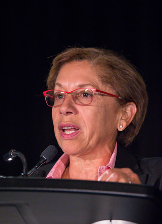Edith Perez MD speaks during Workshop: Methods in Breast Cancer Clinical Research