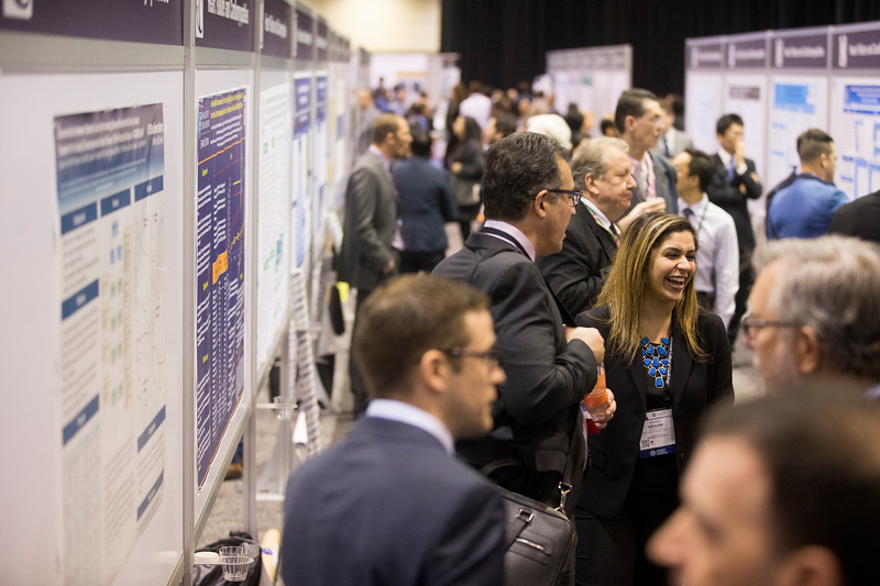 Attendees during Poster Sessions (Saturday)