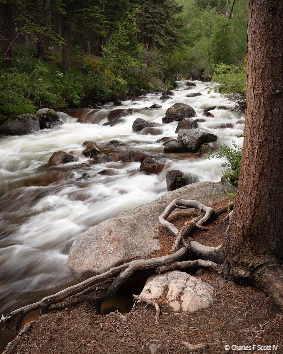 IMAGE: https://photos.smugmug.com/Public/2019-Colorado/i-BR7XHNn/0/d02761b6/X3/20190722-2629-X3.jpg