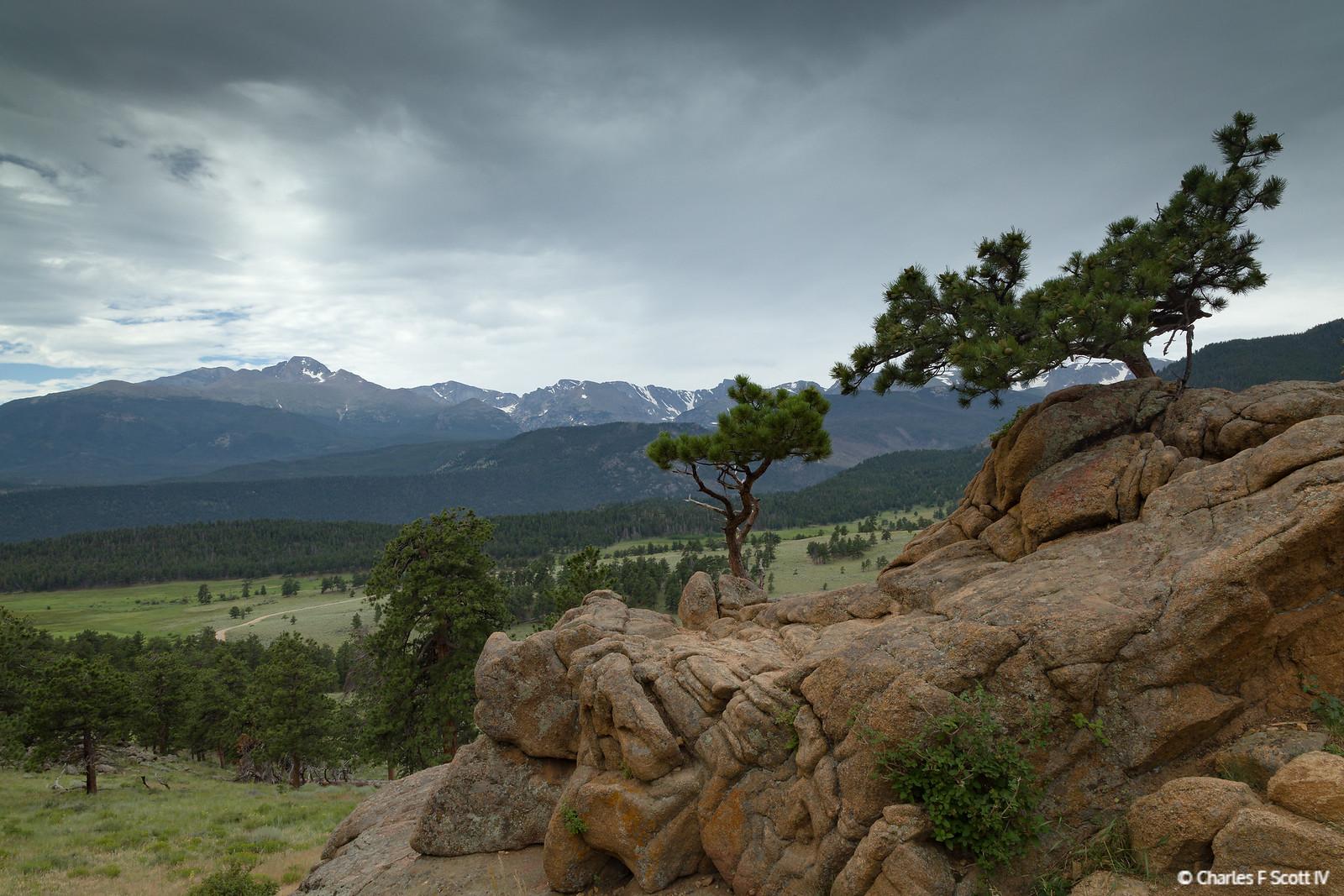 IMAGE: https://photos.smugmug.com/Public/2019-Colorado/i-ZBZbZWv/0/69ebd87f/X3/20190801-4482-X3.jpg