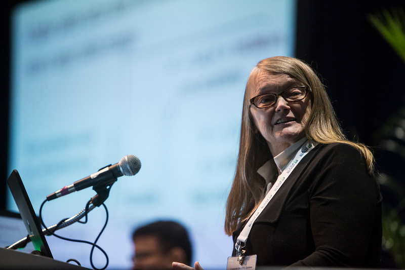 Suzanne Lacasse presents during Technical Sessions: Geotechnics for Offshore Renewables