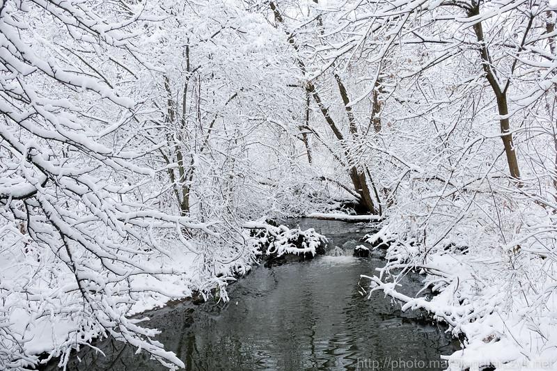 Winter creak