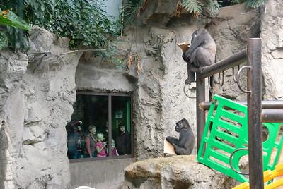 Buffalo Zoo Meetup-1249