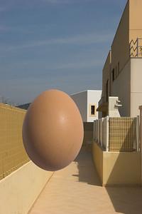 egg_2-S.jpg