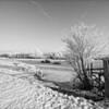 Winter in the Merwelanden (Dordrecht)