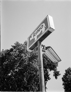 Fujifilm GA645i | 65mm  | CatLabs 80 @ 32  Digitized with Sony A7rIV | Negative Supply 120 Carrier