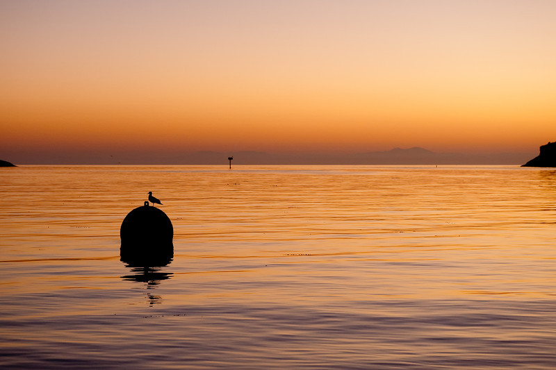 Sunrise at the Isthmus Harbor, Catalina Island. Taken on Sept. 25, 2010 with a Nikon D700.