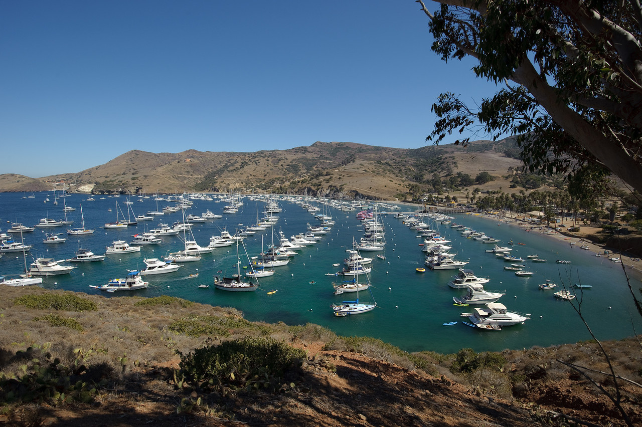 A full Isthmus Harbor, Catalina Island. Taken on Sept. 4, 2010 with a Nikon D700.