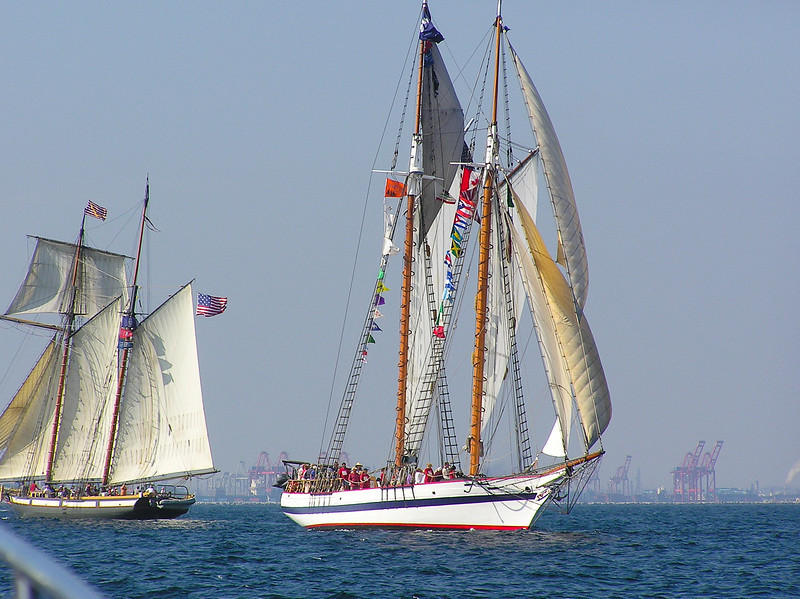 Tall Ships off of Long Beach, California. Taken in 2005.