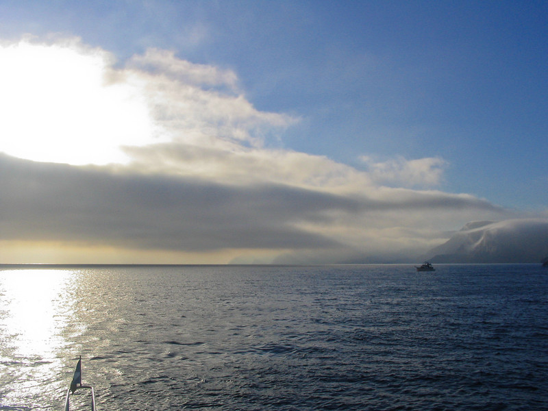 Somewhere off Catalina Island, California. Taken on Sept. 25, 2004 with a Canon A70 point and shoot.