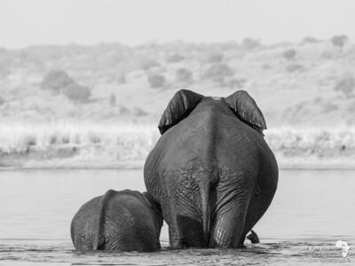 Goodbye Namibia. Hello Botswana