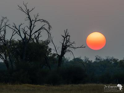 Sunset in Khwai