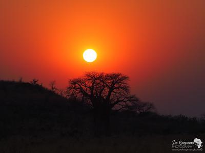 Morning Botswana