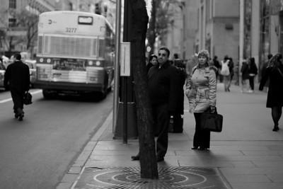 Bus Stop No. 99