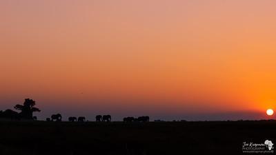 Sunset Parade