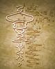 Untranslated Symbol