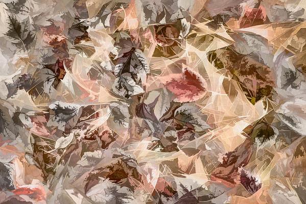 Leaves #154 - Subtly Soft Series