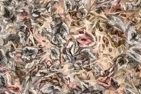 leaves #121 - Pleasant Pastel Series