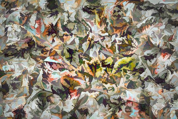 Leaves #186 - Suspicious Spectrum Series