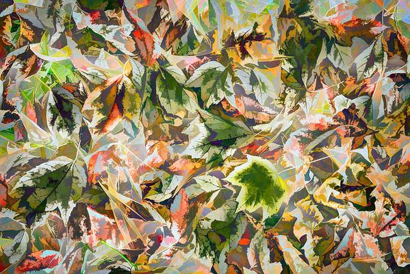 Leaves #184 - Suspicious Spectrum Series
