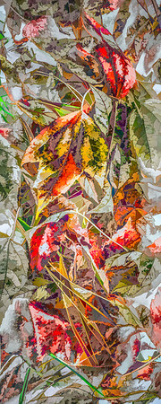 Leaves #83 - Graphic Grandeur Series