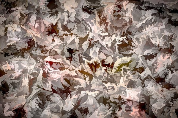 Leaves #43 - Devilishly Dramatic Series