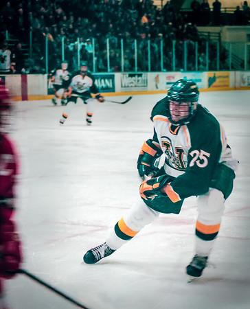 Vermont Hockey #5