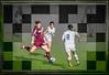 Salisbury Women's Soccer #25, Stylized