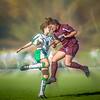 Salisbury Women's Soccer #22, Stylized