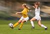 Salisbury Women's Soccer #5, Stylized