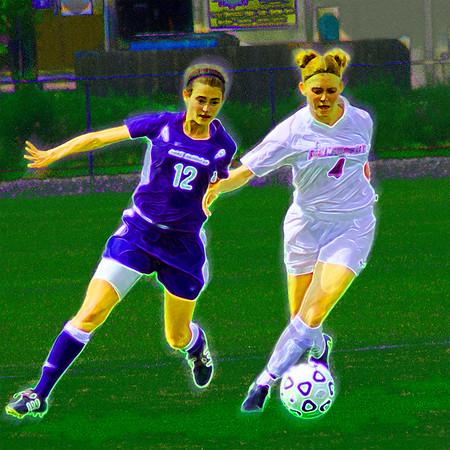 Salisbury Women's Soccer #1, Stylized