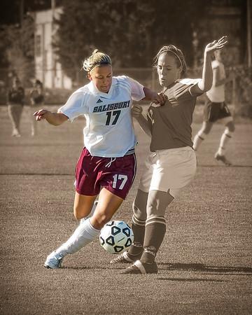 Salisbury Women's Soccer #4, Stylized