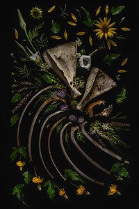 Untitled Naturmerz I