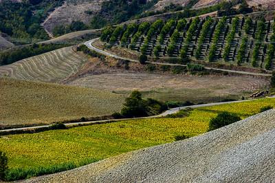 Valdelsa Landscape IV