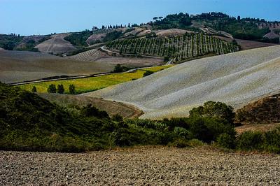 Valdelsa Landscape V