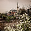 Mosque (Istanbul)