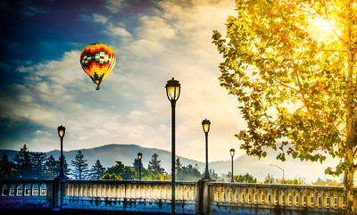 Golden Napa Morning