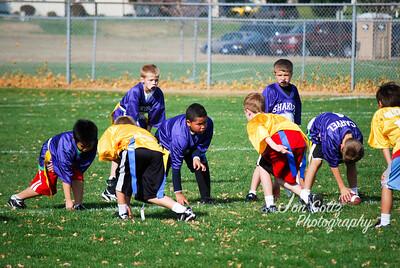 Football 2011 Wildcats - 1392