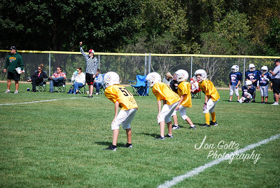 Steelers and Patriots - 005