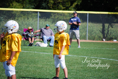 Steelers and Patriots - 023
