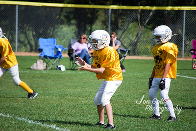 Steelers and Patriots - 012