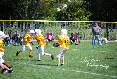 Steelers and Patriots - 014
