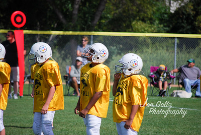 Steelers and Patriots - 022