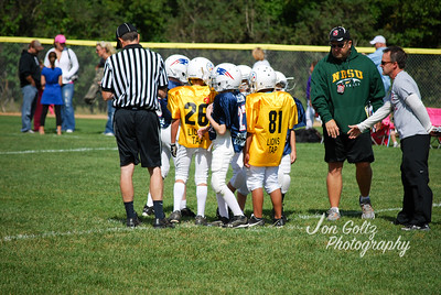 Steelers and Patriots - 002