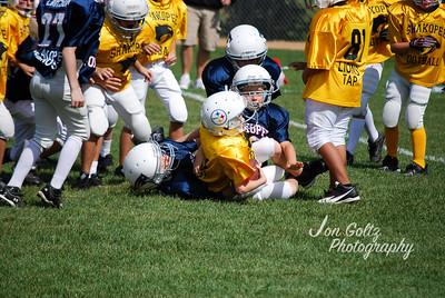 Steelers and Patriots - 013